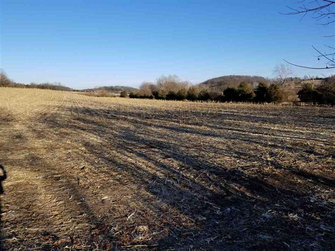 40 acres LEE HWY, Weyers Cave, VA 24486