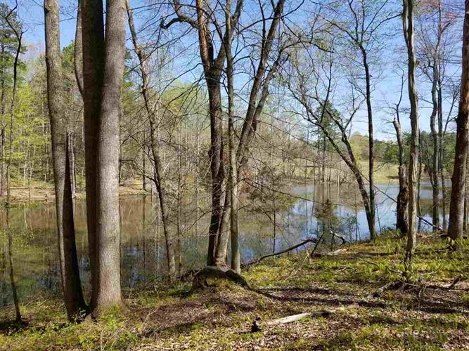 Lot 1B WILHOITS MILL RD, Barboursville, VA 22923 - Image 1