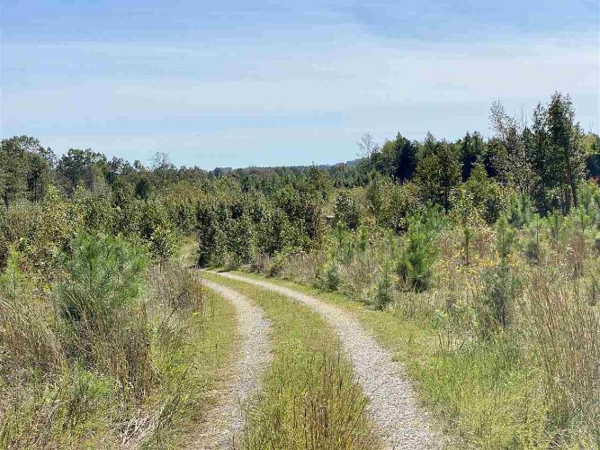Lot 2 CARYS CREEK RD, Fork Union, VA 23055 - Image 1
