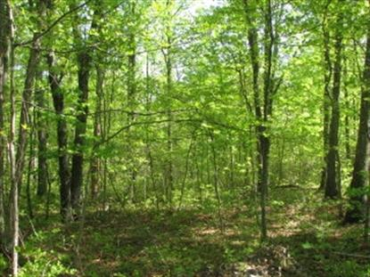 Lot 2 LONG BOW ACRES  Elkton, VA MLS# 533392