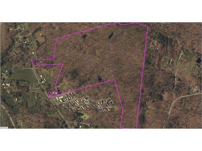 TBD EAST SIDE HWY  Crimora, VA MLS# 559884