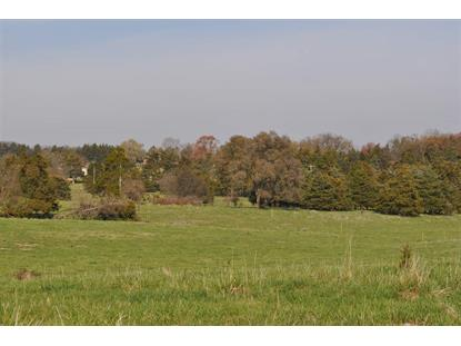 TBD NORTH VALLEY PIKE  Lacey Spring, VA MLS# 569235