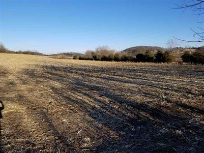 55 acres LEE HWY  Weyers Cave, VA MLS# 572028