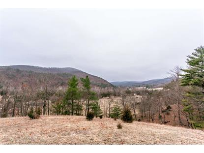 0 LITTLE DRY RIVER RD  Fulks Run, VA MLS# 580059