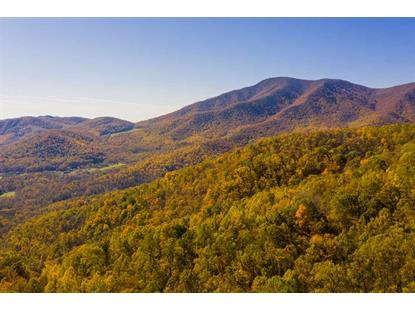 0 BRYANT MOUNTAIN RD  Nellysford, VA MLS# 582535