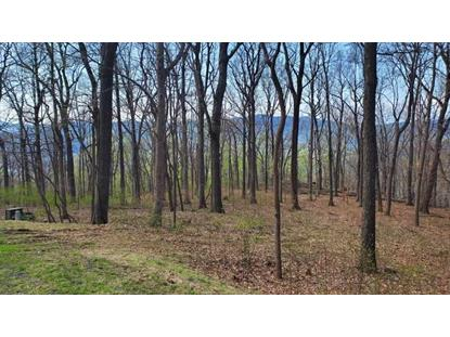 449 FAR KNOB CLIMB  Nellysford, VA MLS# 583397