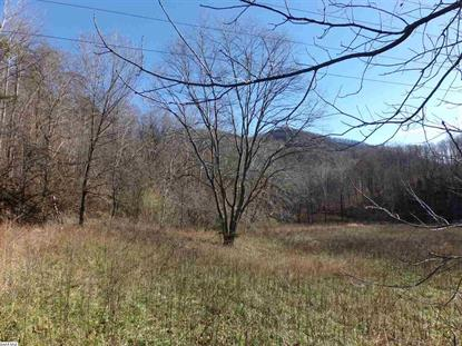 STATE ROUTE 6 TBD  Nellysford, VA MLS# 583994