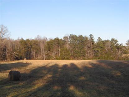 Lot 3 N BOSTON RD  Troy, VA MLS# 585311
