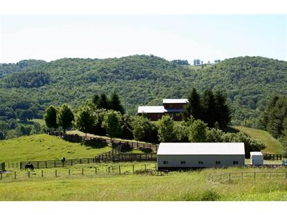 7192 DOE HILL RD  Mc Dowell, VA MLS# 591973