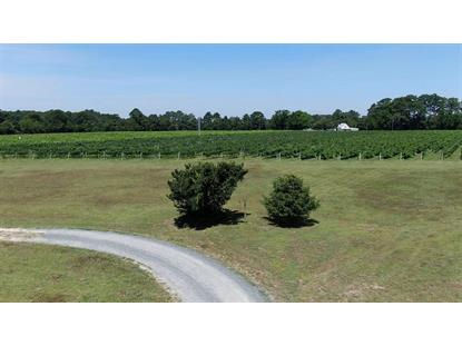 11171 INDIAN TRAIL RD  Belle Haven, VA MLS# 592772