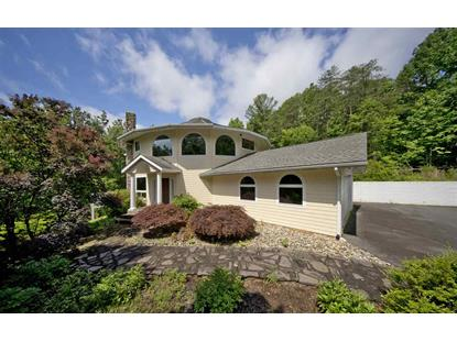 629 LAKELAND LN  Nellysford, VA MLS# 598032