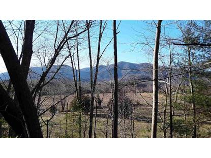 0000 CRABTREE FALLS HWY  Massies Mill, VA MLS# 599142