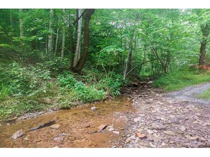 8024 TABLETOP MOUNTAIN RD  Dyke, VA MLS# 599326