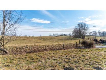 8.46 Acres on GOOSE CREEK RD  Raphine, VA MLS# 600421