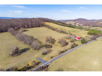 11.96 Acres on GOOSE CREEK RD  Raphine, VA MLS# 600422