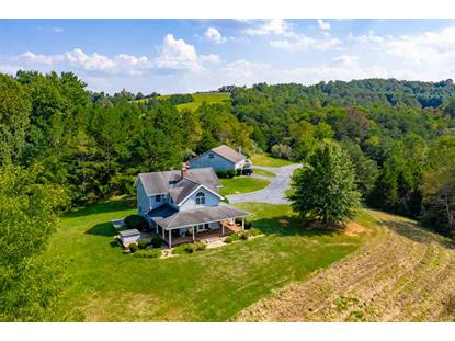 98 S GREEN HILL LN  Churchville, VA MLS# 600748