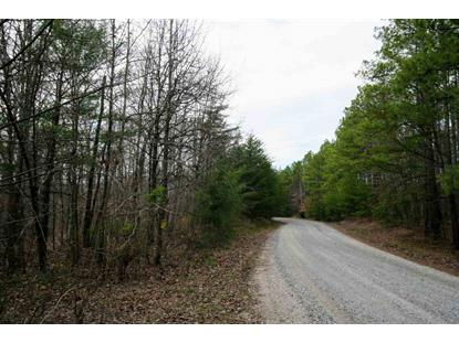 TBA Lot M SELMA RD  Howardsville, VA MLS# 601616