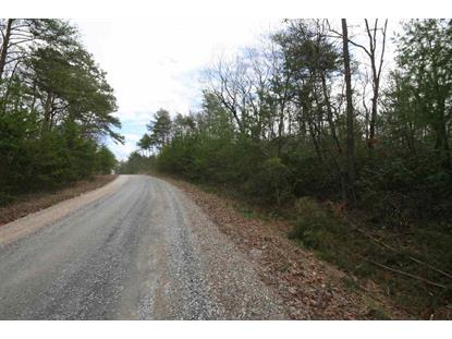 TBA Lot N SELMA RD  Howardsville, VA MLS# 601617