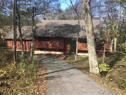 1191 DEVILS KNOB LOOP  Wintergreen Resort, VA MLS# 601655