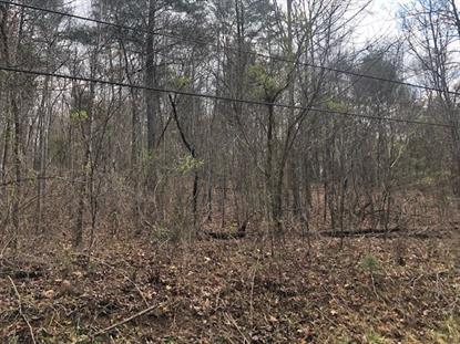TBD ESTALINE VALLEY RD  Goshen, VA MLS# 601955