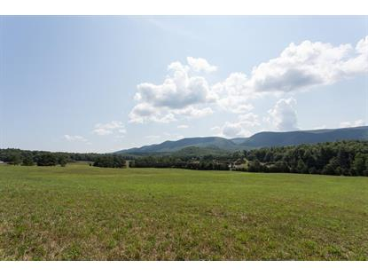 54 ALLEN CREEK LN  Goshen, VA MLS# 602698