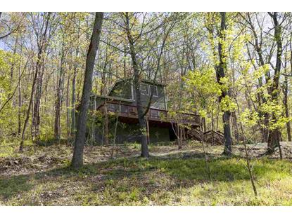 1114 GREENE ACRES RD  Stanardsville, VA MLS# 602752
