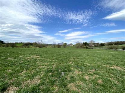 TBD PORT REPUBLIC RD  Port Republic, VA MLS# 602803