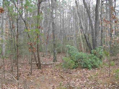 Lot 43 HAVENWOOD LN  Schuyler, VA MLS# 603042
