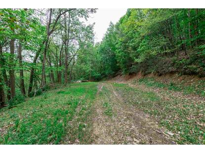 0 PINEY MOUNTAIN DR  Stanley, VA MLS# 603639
