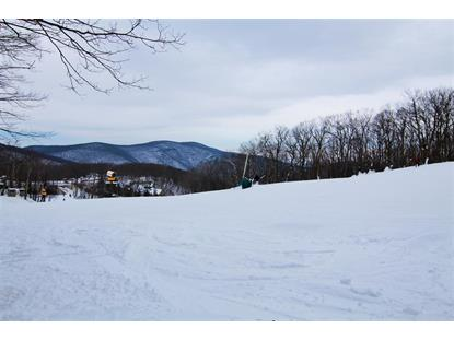 128 EAGLES CT CONDOS  Wintergreen Resort, VA MLS# 603810