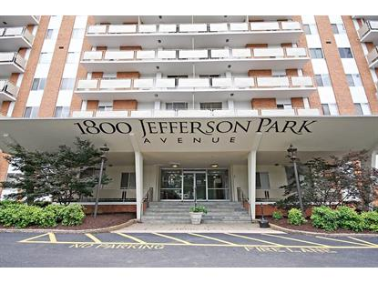 1800 JEFFERSON PARK AVE  Charlottesville, VA MLS# 603854