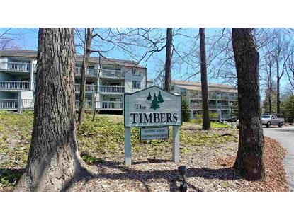 220 TIMBERS CONDOS  Wintergreen Resort, VA MLS# 603893