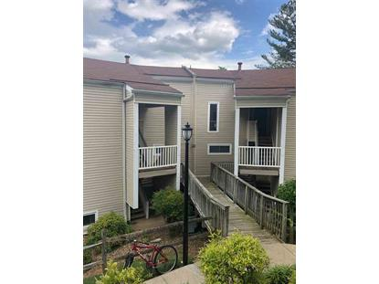 613 MADISON AVE  Charlottesville, VA MLS# 604000