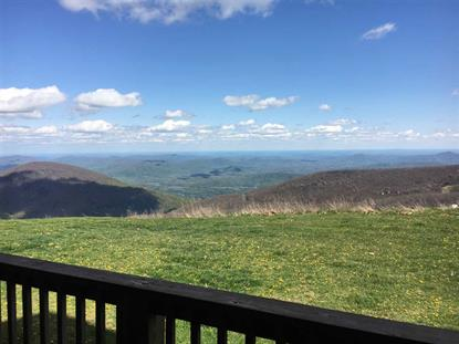 1610 OVERLOOK CONDOS  Wintergreen Resort, VA MLS# 604277