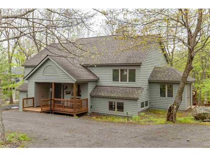 526 LAUREL SPRINGS DR  Wintergreen Resort, VA MLS# 604294