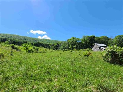 909 LITTLE VALLEY DR  Warm Springs, VA MLS# 604869