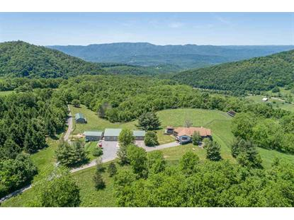 5117 HOT SPRINGS RD  Hot Springs, VA MLS# 605646