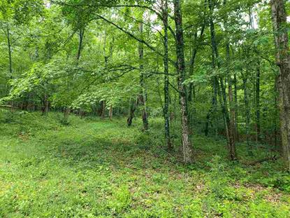 DRY RUN RD  Burnsville, VA MLS# 605699