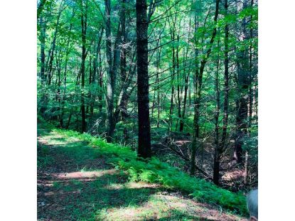 TBD EDSEL HOLLOW TRL  Vesuvius, VA MLS# 606210