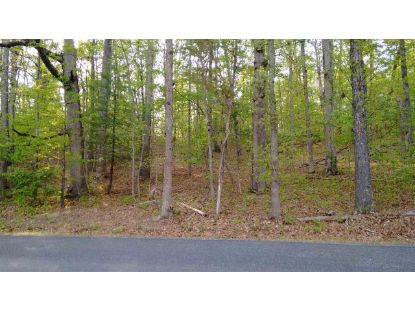 BURNLEY RD  Barboursville, VA MLS# 606607