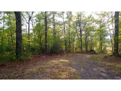 BURNLEY RD  Barboursville, VA MLS# 606610