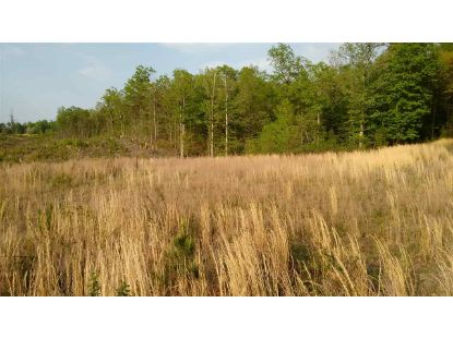 BURNLEY RD  Barboursville, VA MLS# 606612