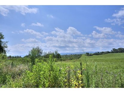 TBD STUARTS DRAFT HWY  Stuarts Draft, VA MLS# 606635