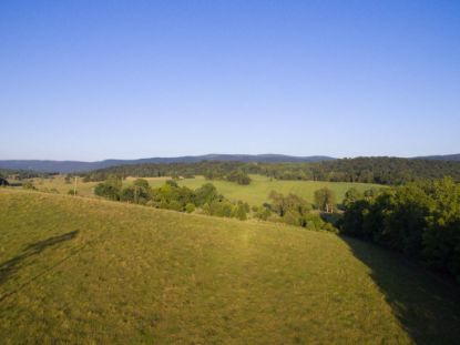 78 ac FRIDLEYS GAP RD  Harrisonburg, VA MLS# 607073