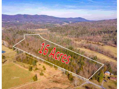 0 CRAB RUN RD  Bergton, VA MLS# 607230