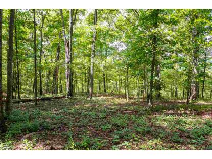 D-2 WINSOME ORCHARD LN  North Garden, VA MLS# 607578