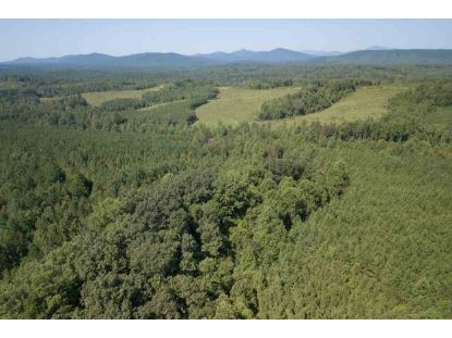 0 OLD GREEN MOUNTAIN RD  Schuyler, VA MLS# 607766
