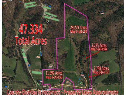20000 RIVER BOTTOM LN  Bergton, VA MLS# 608627