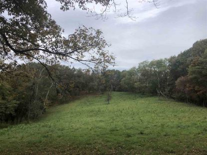 TBD BRANCH MOUNTAIN LN  Bergton, VA MLS# 609112