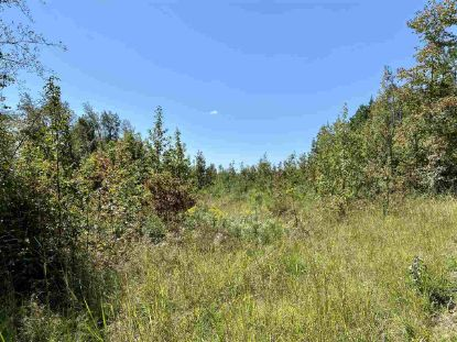Lot 5 CARYS CREEK RD  Fork Union, VA MLS# 609212